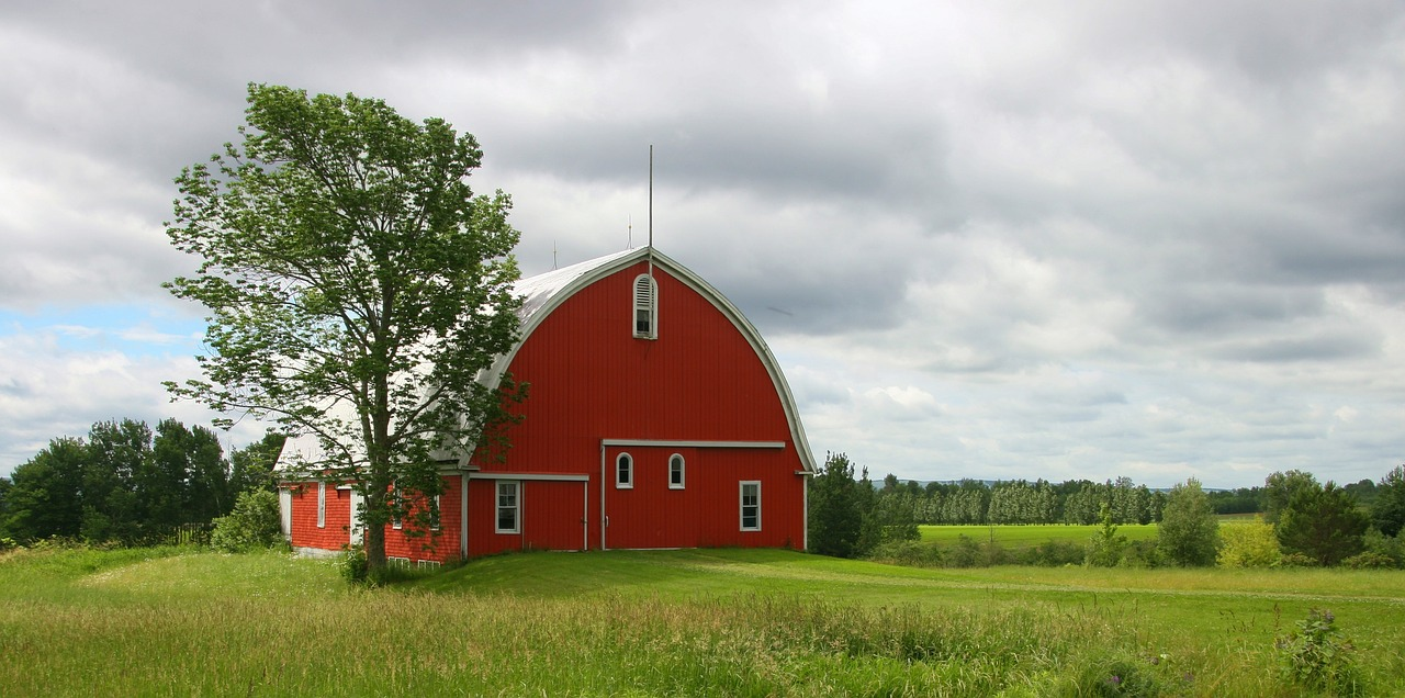 Tips For Improving Your Farm Storage